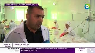 В Армении под угрозой оказались и популяция раков, и бизнес раколовов