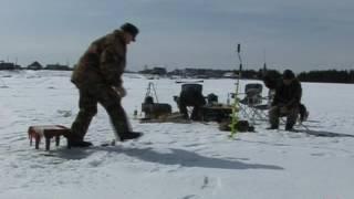 Зимняя рыбалка на чебака в Саранпауле
