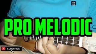 Pro Melodic Kentrung Senar 3 by Yahya (Gapuk Squad)