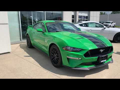 2019 Ford Mustang GT - Need for Green