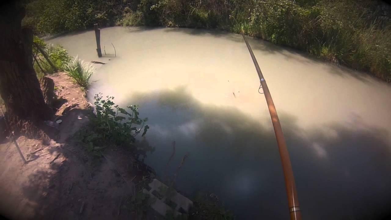 La pêche à astrakhani la chasse sous-marine