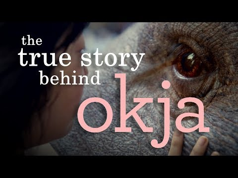 Okja | Understanding The (Im)Morality Of Animal Consumption