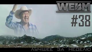 Dank WebM Compilation #38