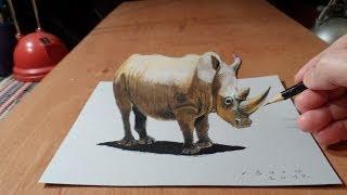 Drawing a Rhinoceros, 3D Trick Art