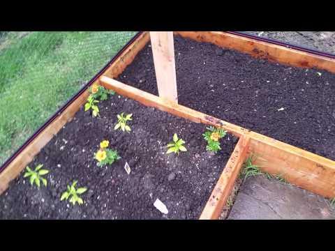 Jerrys perfect garden 2014