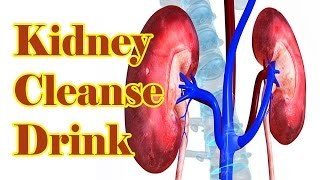 किडनी को साफ़ करे वह भी सिर्फ 5 रुपैये में - Kidneys Cleansing | Health Tips In Hindi