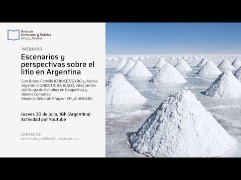 Escenarios y perspectivas sobre el litio en Argentina