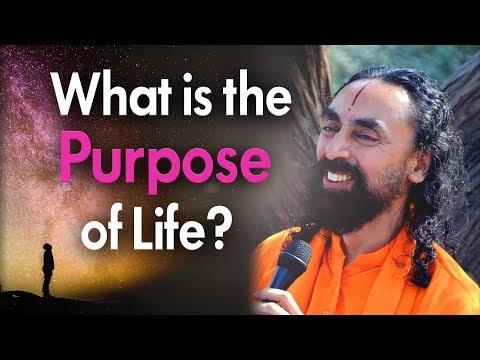 MIT Student Asks True Purpose of Human Existence   Swami Mukundananda