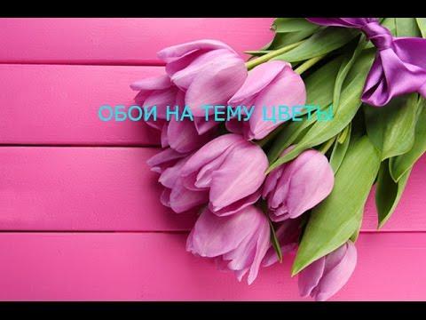 Топ 5 самых красивых обоев на тему цветы