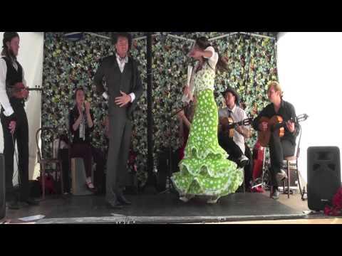 Amor Flamenco - una tarjeta postal de alegría