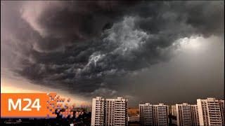 Водителей призвали быть внимательнее из-за ухудшения погоды - Москва 24
