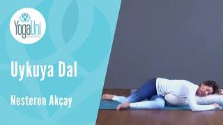 Yoga Journal Şubat 2017 - Uykuya Dal - Nesteren Akçay