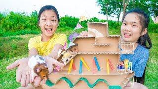 Thử Thách Nuôi Chuột Hamster ❤ Cuộc Thi Thoát Khỏi Mê Cung - Trang Vlog