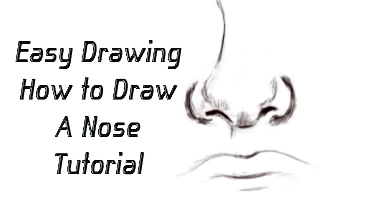 The gallery for --> Simple Drawings Of Noses
