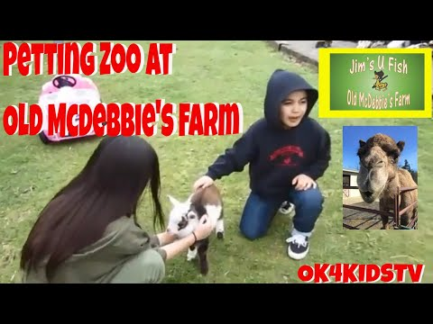 Old McDebbie's Farm Spanaway | Jim's U-Fish Spanaway WA | Family Travel With KidS Petting  Zoo Visit