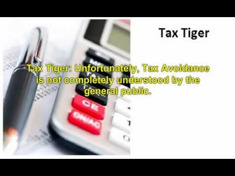 Tax Avoidance or Tax Evasion? Tax Tiger Explains the Difference