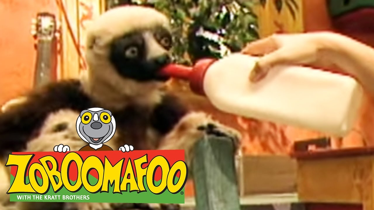 🐒 Zoboomafoo 🐒 122 | Pets - Full Episode | Kids TV Shows