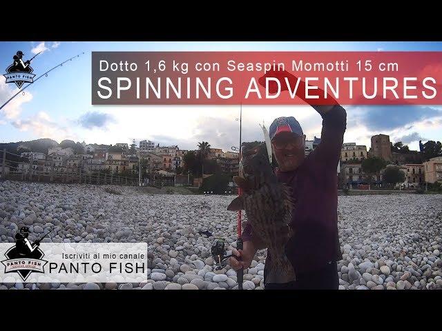 Spinning Adventures | Dotto con Seaspin Mommotti 15