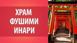 Фушими Инари. Киото. Японские достопримечательности. Поездка в Японию.(Фушими Инари. Киото. Японские достопримечательности. Поездка в Японию. goo.gl/BOzmHg - Получите бесплатный мини-ку..., 2015-10-23T06:16:14.000Z)