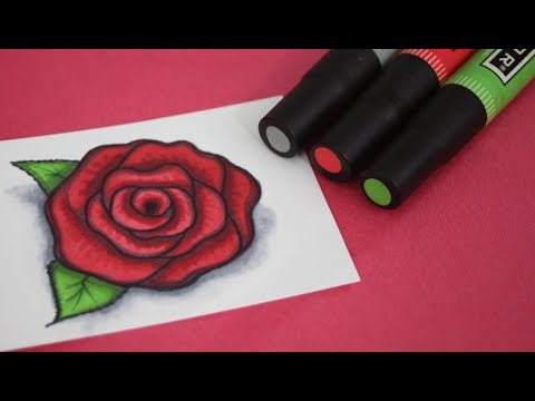 How To Draw A Rose Using Markers Color Blending Techniques Youtube