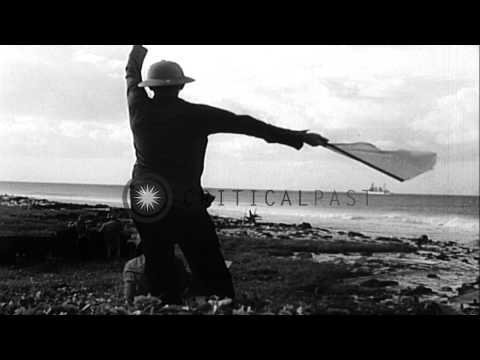 Survey of Clipperton Island during Byrd expedition. HD Stock Footage