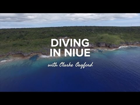 Diving in Niue with Clarke Gayford