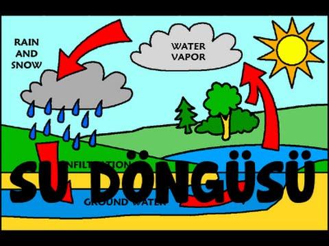 Su Döngüsü Animasyon Water Cycle Animation Youtube
