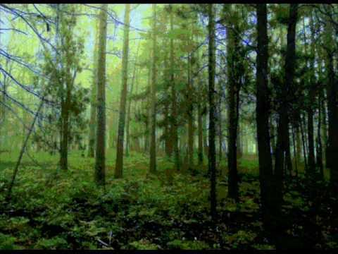 Lakota Mother Earth Song