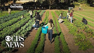 In the shadow of Austin, Texas, a small farm looms large
