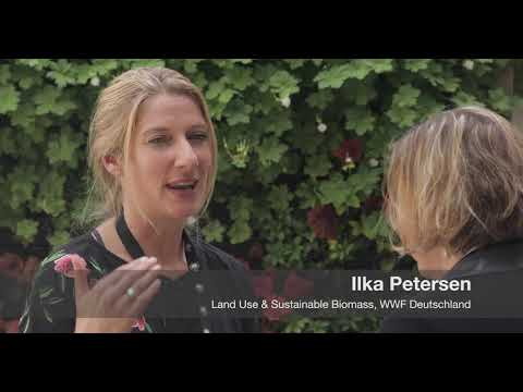 Interview with Ilka Petersen, responsible for Land Use & Sustainable Biomass, WWF Deutschland