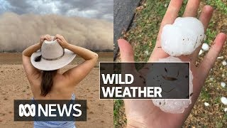Giant hail hits Melbourne while dust storm blocks out the sun in western NSW | ABC News