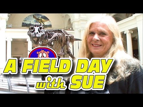 A FIELD DAY WITH SUE