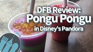 Pongu Pongu in Disney World's Pandora -- The World of Avatar Restaurant Review