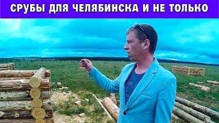 Срубы для бани и дома в Челябинске(Этим видео мы презентуем наше новое производство срубов для бани и срубов для домов. Помимо того что мы..., 2016-07-04T08:33:59.000Z)