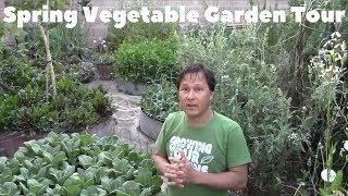 Abundant Spring Backyard Organic Vegetable Garden Tour