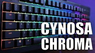 NEW Razer Cynosa Chroma Review