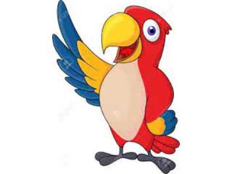 Image result for cartoon parrot