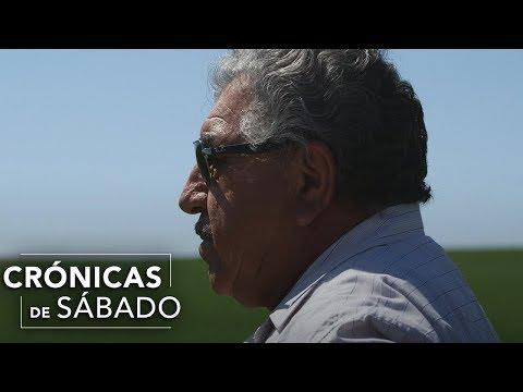 El Gallo Por La Mañana - Con el sudor de su frente, un mexicano logra crear un imperio.