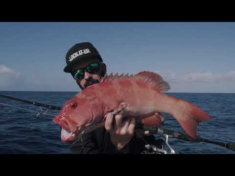 Fishing 1770 - Agnes Waters. Micro Jigging & Popping REEF FISHING