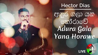 D Major LIVE PRODUCTION 2014 ANDURA GALA YANA  // HECTOR DIAS