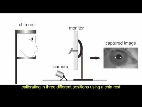Study of Polynomial Mapping Functions in Video-Oculography Eye Trackers