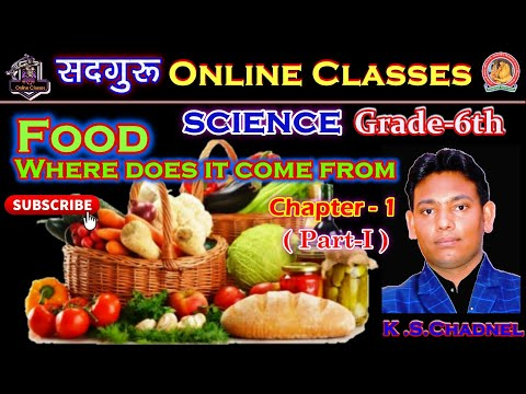 Food: Where does it come from? | Class 6 Science Chapter 1 |Sadguru Online Classes l
