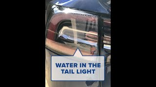 My Tesla Model 3 has water in the tail light!