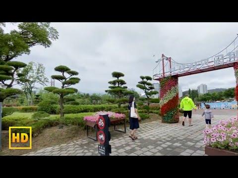ស្អាតកប់តំបន់កំសាននៅប៊ូសាន | Busan Citizen Park