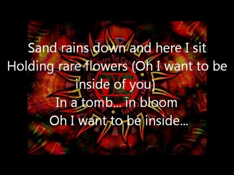 Alice In Chains- Down In A Hole- Lyrics