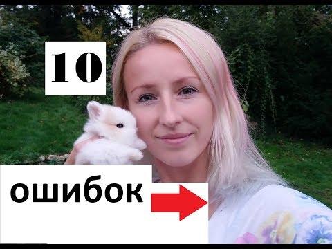 Что нужно знать о кроликах. Почему кролика нельзя брать за уши. Можно ли кроликов класть на спину?