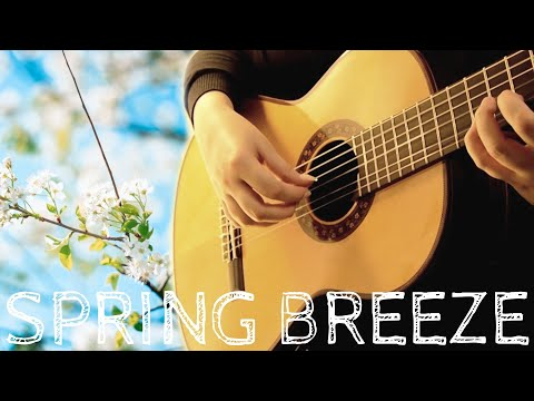 Spring Breeze / 望春風 | Taiwanese Folk Song | Fingerstyle Guitar
