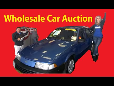 2800 Car Auction HUGE Auto Auctions Used Wholesale Trade in Cars