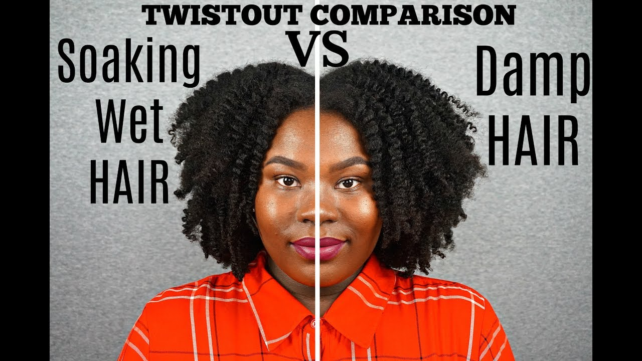 Twist Out Comparison Soaking Wet Hair Vs Damp Hair Type