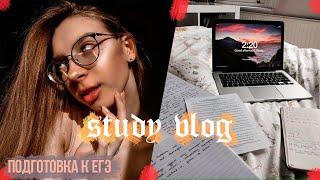 ПОДГОТОВКА К ЕГЭ/VLOG #StudyVlog  Elizabet Mayer
